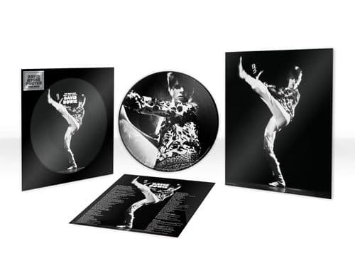 David Bowie 'The Man Who Sold The World' VINYL LP Picture Disc (2021)