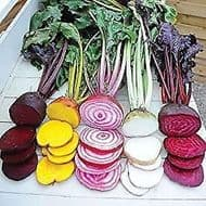 Beetroot Mixed Colours 50 Seeds- Exciting mix of colours and varieties ORGANIC