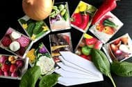 Colourful Vegetable Seeds Collection - 10 packets/40 Varieties ORGANIC+Markers