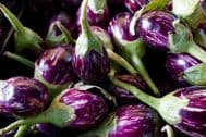 Eggplant Udumalpet 10 Seeds - early, tender,firm and sweet veriety. NON GMO