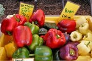Pepper Mixed Colours 50 Seeds, Mixed colours&sizes,many varieties ORGANIC
